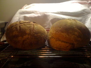 sourdough boule