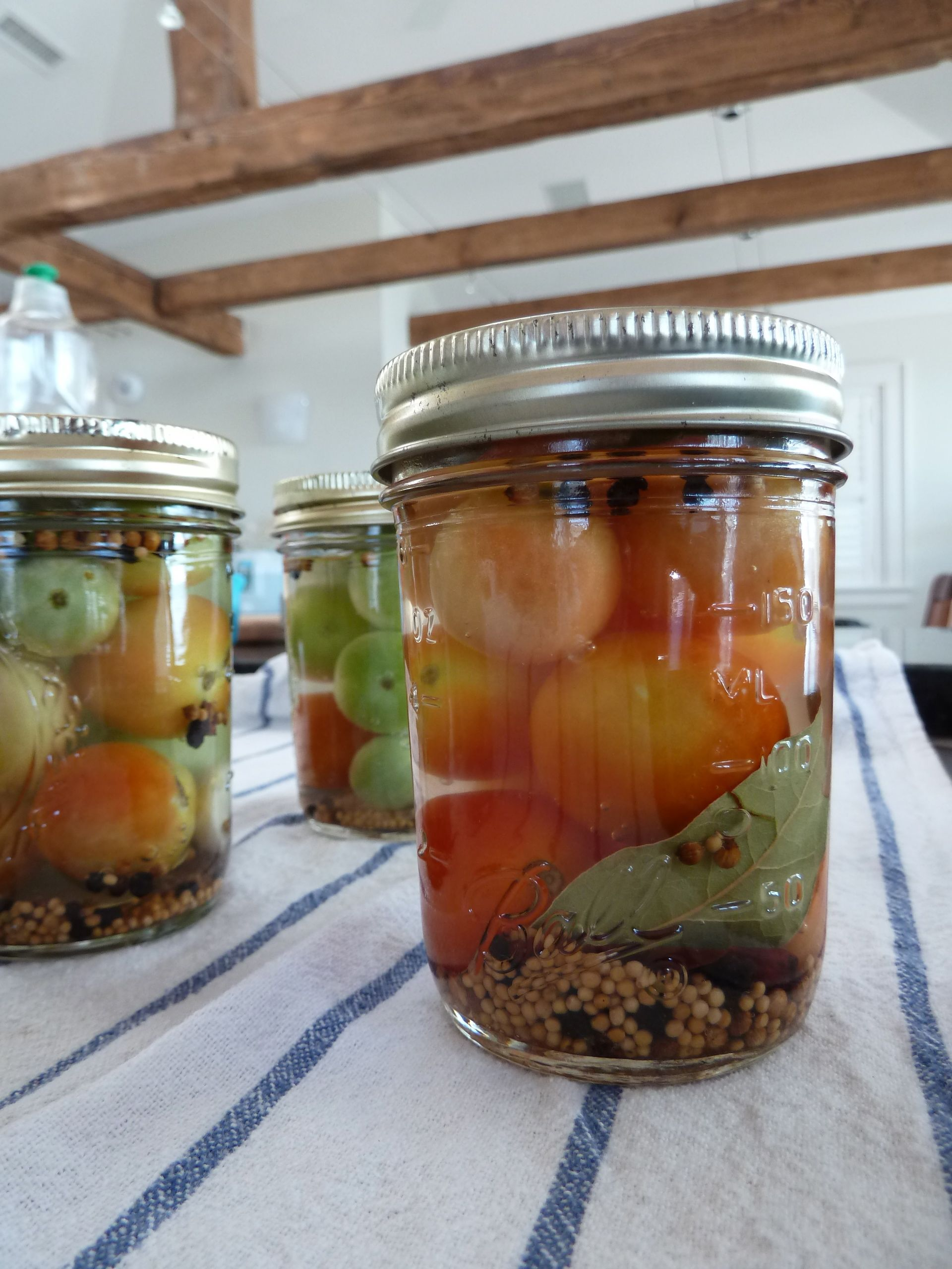 Hostess: how to pickle tomatoes in jars 24