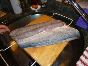 Bluefish fillets